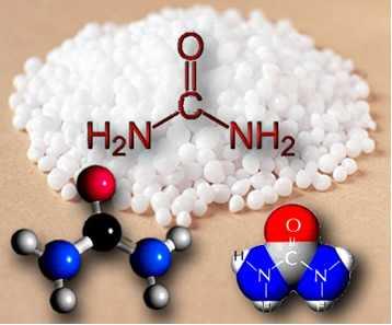 Molécula de ureia
