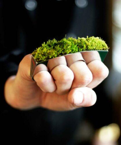 10ideias-de-design-verde-inspiradas-pela-natureza-u-857x1024