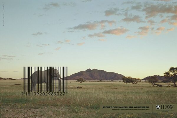 anuncio-animal-31