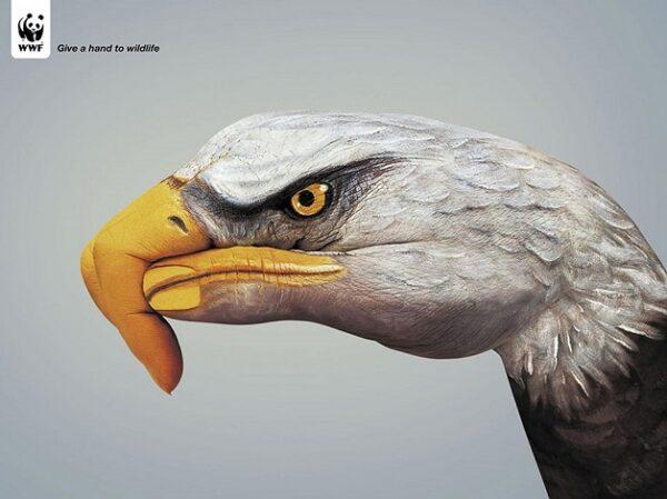 anuncio-animal-44