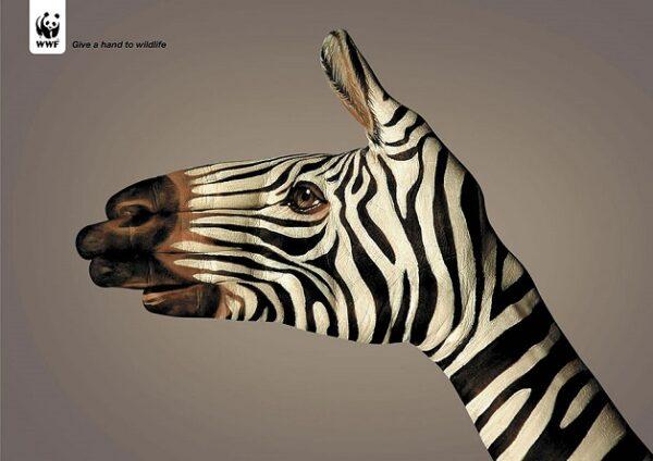 anuncio-animal-45