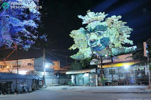 CambodianTrees1