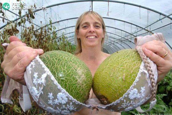 Massive melons