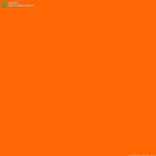 Safety_Orange_Blaze_Orange_429976_i0