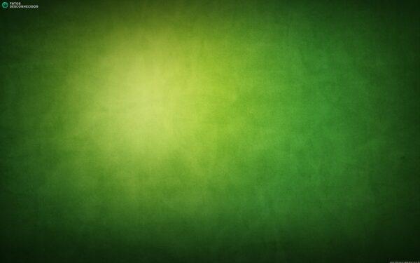green-wallpaper-17329-17885-hd-wallpapers