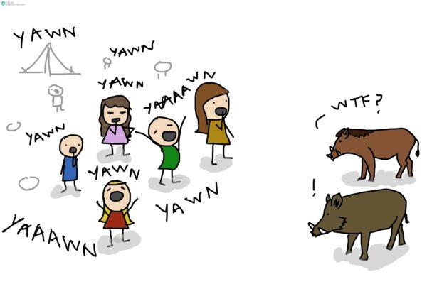 yawn5