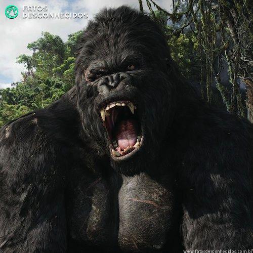 King-Kong-2005-Morse-Code