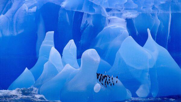 icebergs-1920-1080-wallpaper