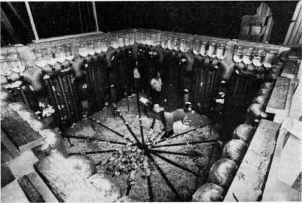 paraiso-ratos-extincao-dos-humanos-728x489