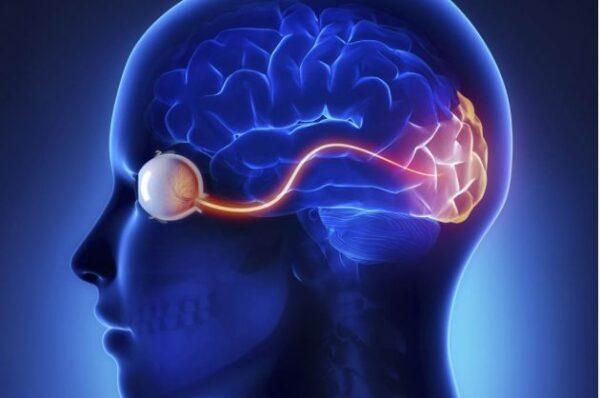 5-cosas-increibles-que-suceden-con-el-cerebro-de-las-personas-ciegas-3