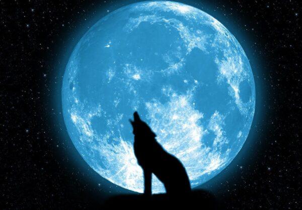 526060-blue-moon