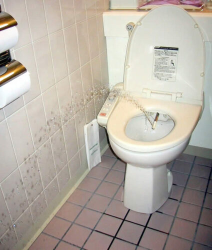 aug-2013-japanese-toilet-bidet