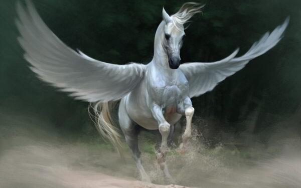 6916524-pegasus-horse