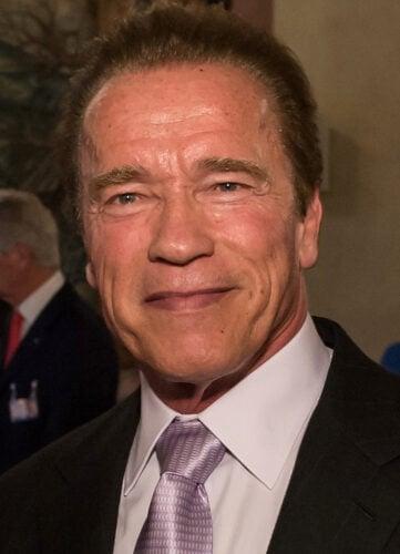 Arnold Shwarzenegger porno consider