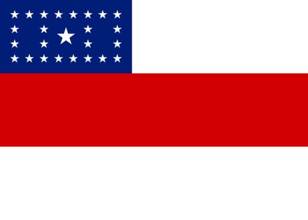 bandeira-amazonas (1)
