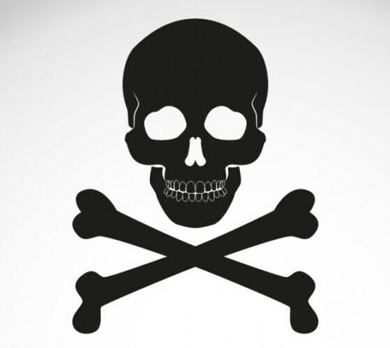 ossos-icone-cranio-vetor-cruzado_23-2147495497