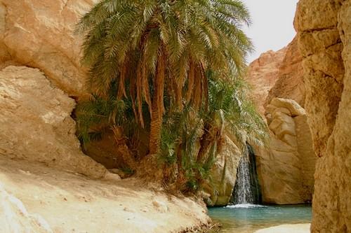 Chebika-Oasis-Tunisia