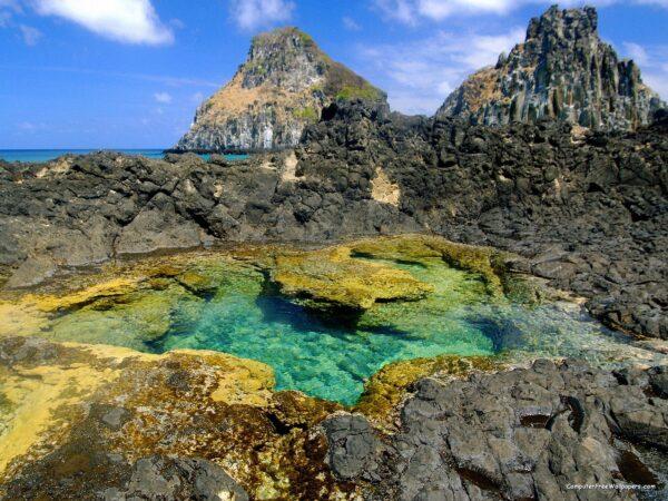 tide-pool-fernando-de-noronha-lua-de-mel