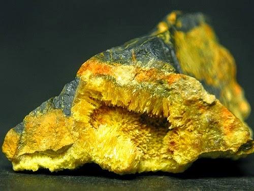 uranio235