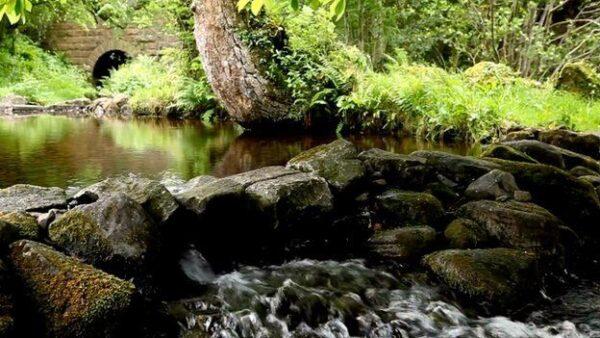 _82751701_waterfall.jpg