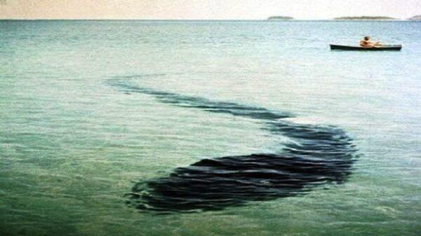 25-The-Hook-Island-Sea-Monster-610x343
