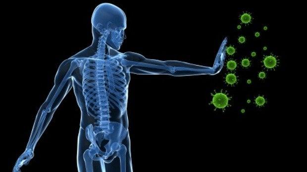 sistema-imunologico-definicao-organizacao-das-celulas-e-linfocitos-e-os-macrofagos