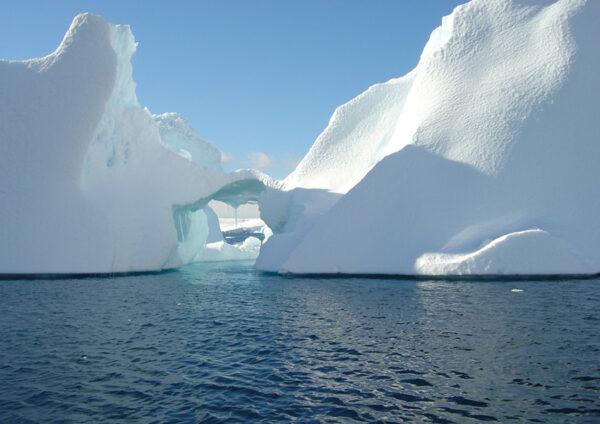lightbox10-antartica
