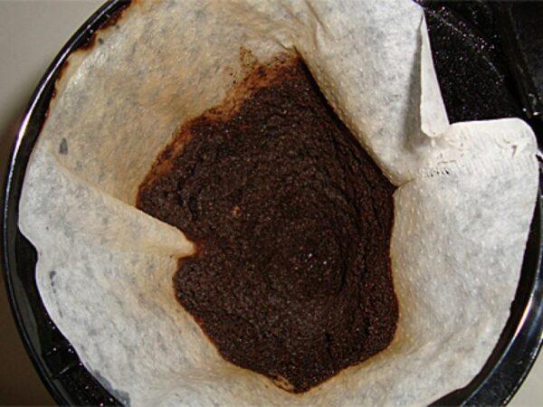 borra de café 5