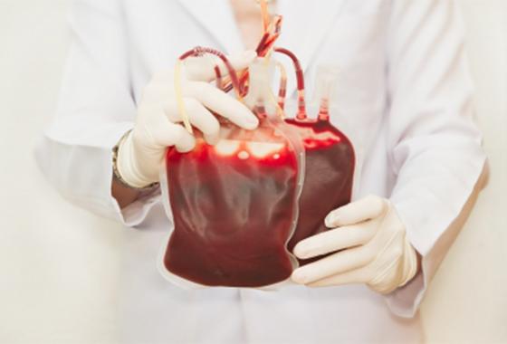 transfusão_freedigitalphotos
