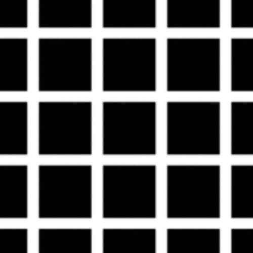 hermann_grid_illusion_test