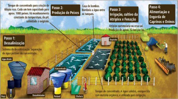 Rejeito_dessalinizadores__grande__2010512101846