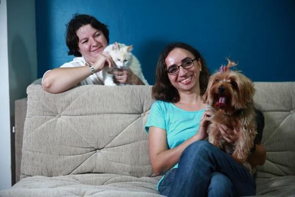 cães-gatos-estranhar-mudancas-ambientes-saiba-o-que-fazer