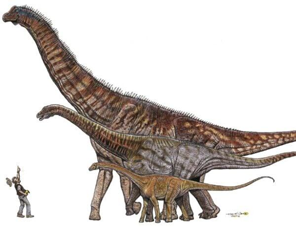 dinossauro-descoberto-de-25-metros-1475682957478_615x470
