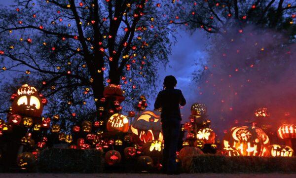 halloween-en-el-zoo-roger-williams-de-providence-eeuu