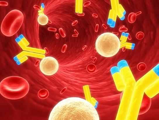 o-ressurgimento-da-imunoterapia-contra-o-cancer