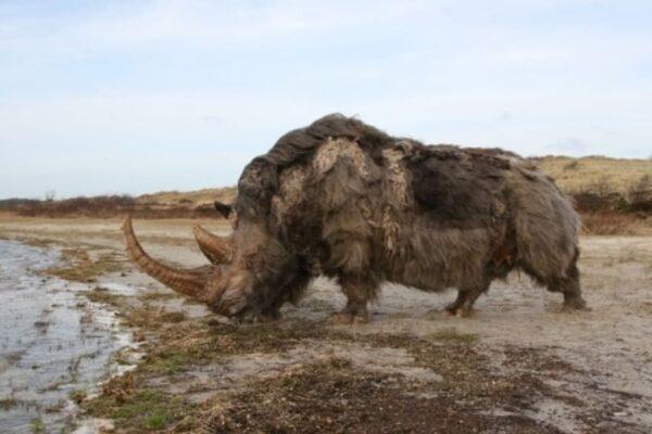 Animais que a ciência está tentando reviver depois da extinção