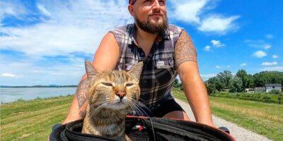 Essa gata viajante provavelmente conhece mais lugares do que você