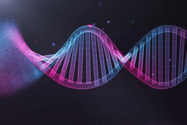 pesquisa DNA